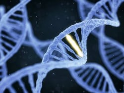 Scientists Discover Possible Genetic Link for Mesothelioma in Young Adults