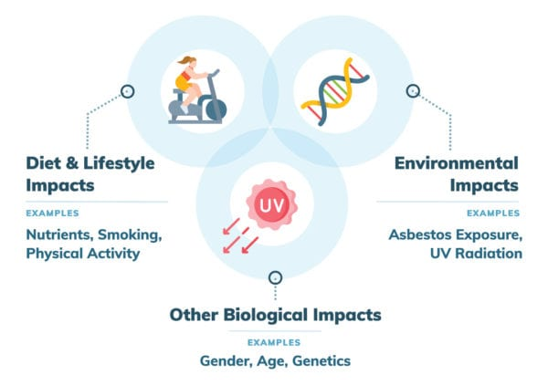 Nutrition, environmental and other factors impacting mesothelioma