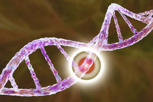 Study Finds Genetic Mutation May Indicate a Risk of Mesothelioma